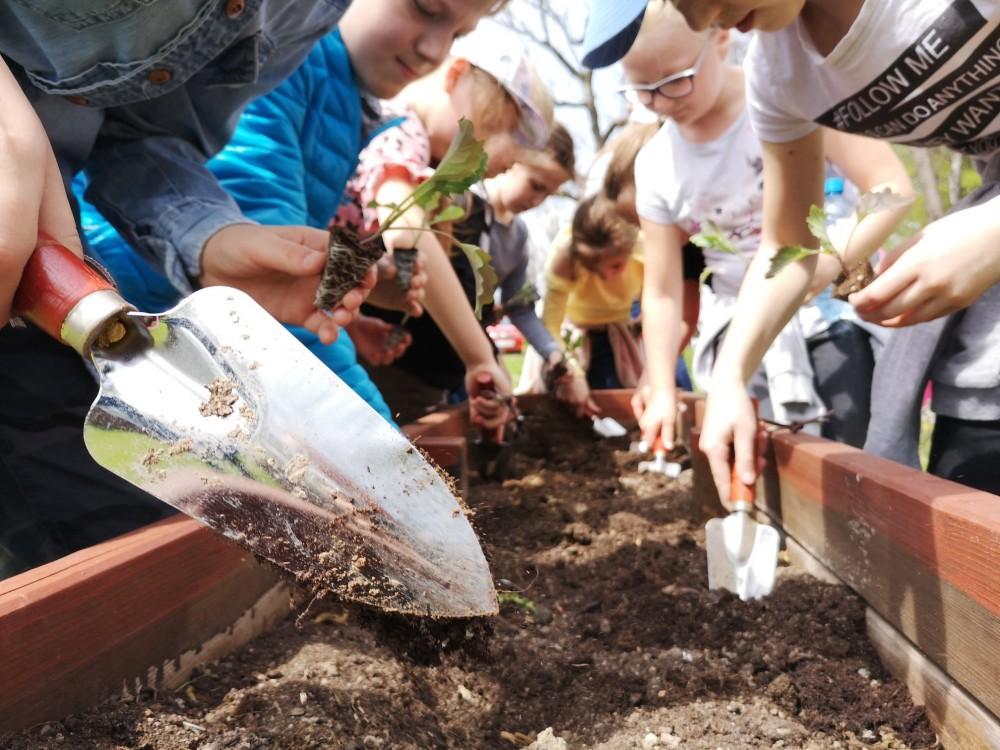 Warsztaty z edukacji ekologicznej dla dzieci i młodzieży